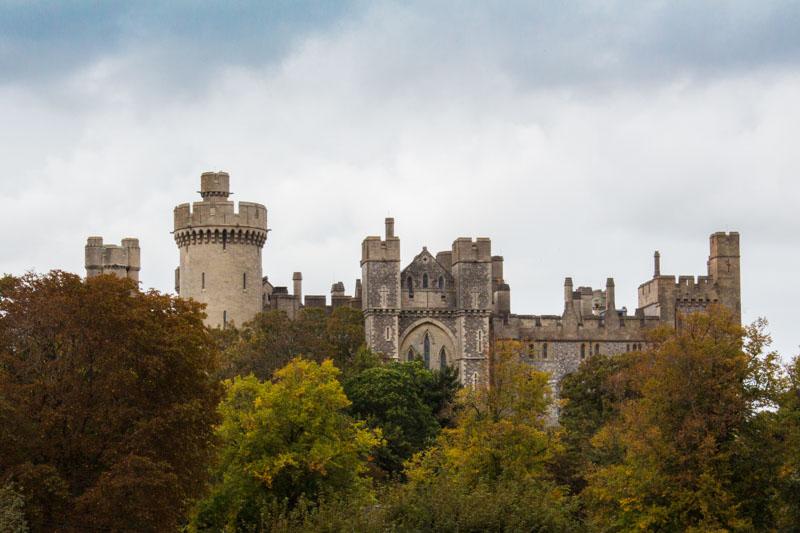 Arundel Castle behind the treeline