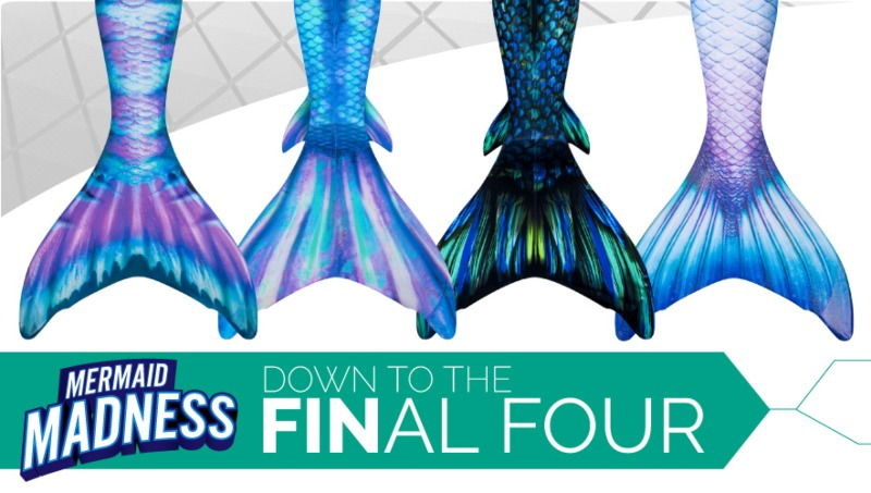 the two Atlantis and two Limited Edition mermaid tails  that advanced to the final four