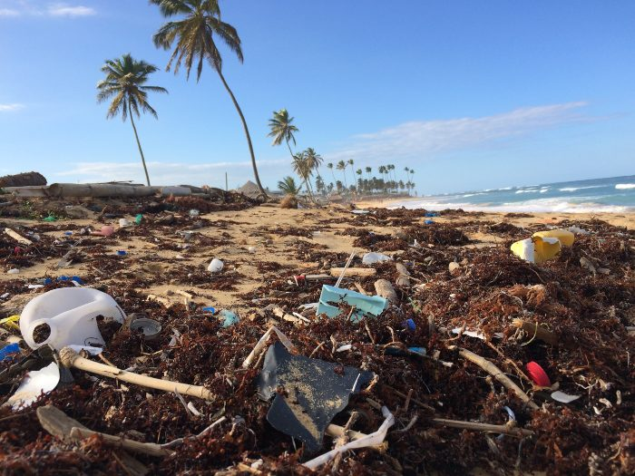 a beach littered with washed up plastic and trash