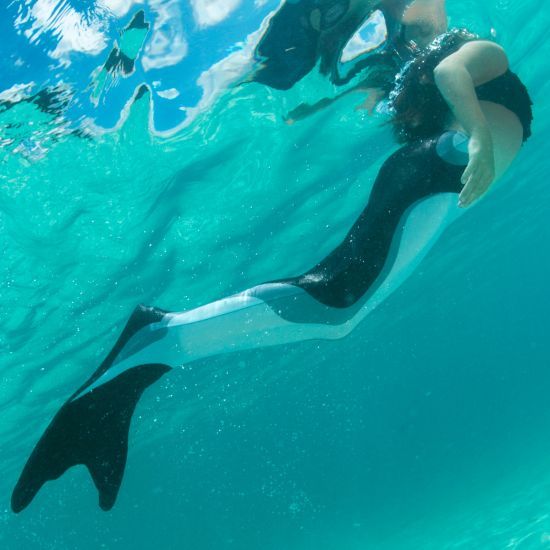 A girl swims underwater in the Orca Limited Edition mermaid tail by Fin Fun.