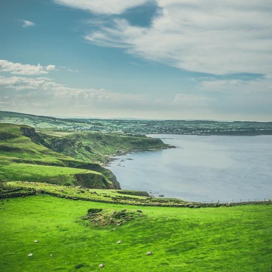 the vivid green Irish coast